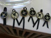 Piratenparty: Medaillen