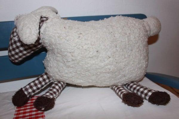 Schlaf mit Schaf