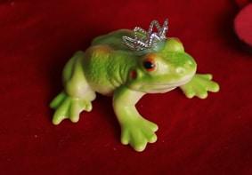 Frosch oder König?