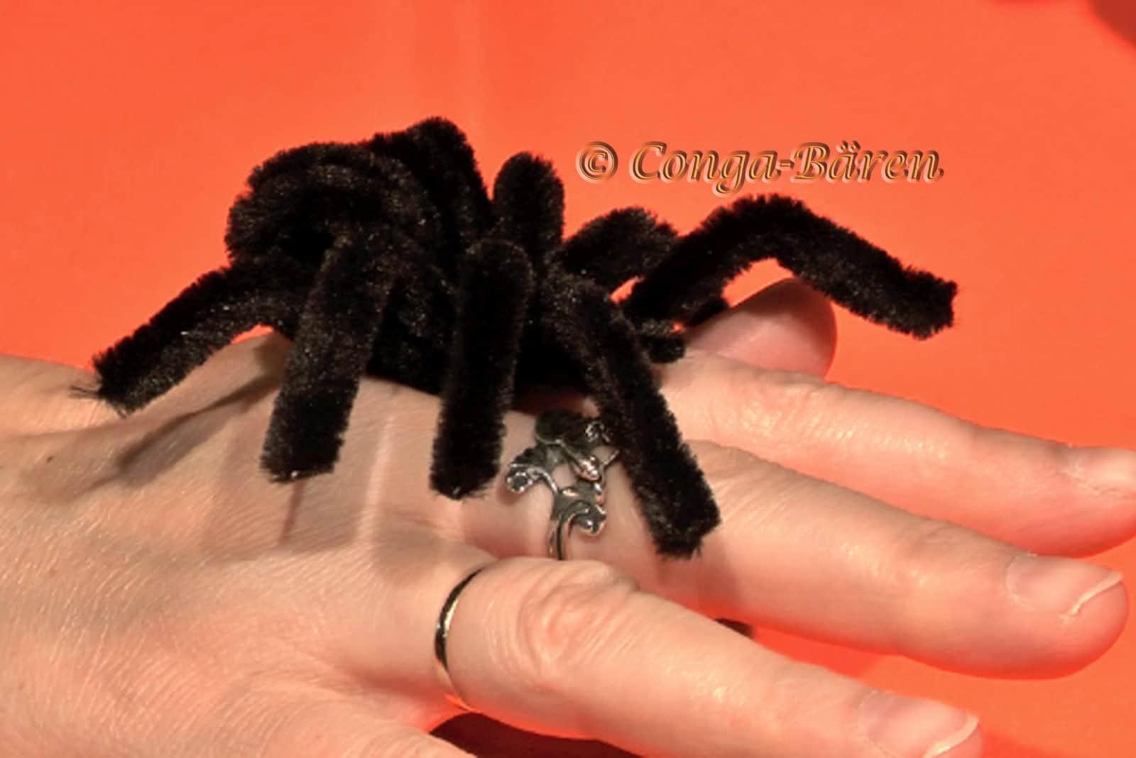 Halloween Spinne Selbst Gemacht Video Handmade Kultur