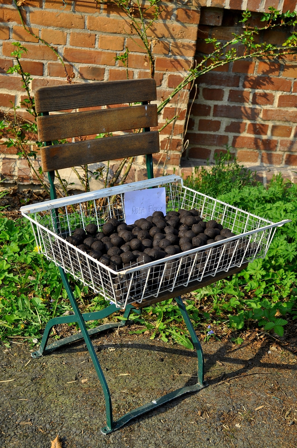 seedballs selber machen handmade kultur. Black Bedroom Furniture Sets. Home Design Ideas