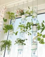 Windowfarm - Meine kleine Farm