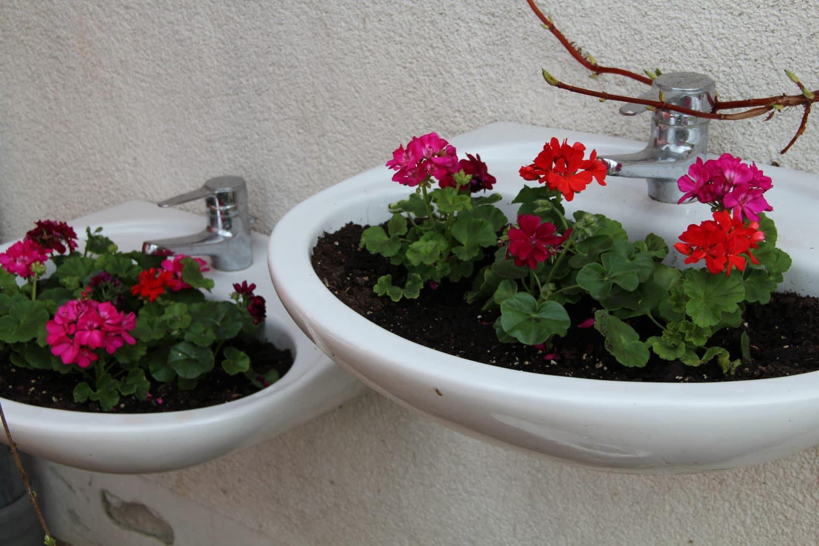 waschbecken als pflanzgefäße - handmade kultur