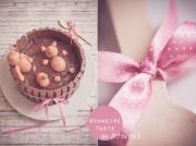 Pigs in the mud-cake oder die berühmte Blogger-Torte