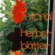 Papier nähen: Herbstblätter-Kette