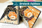 Dreieck-Faltbox