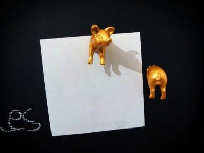 Glückschwein_Magnete