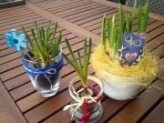 Schnelle Frühlingsdeko