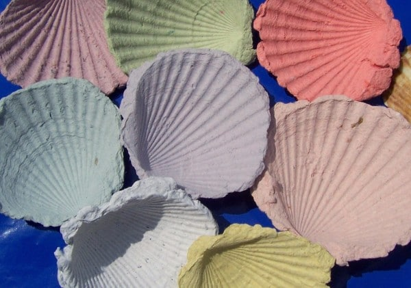 Bunte Papiermuscheln - Sommerfeeling für zu Hause