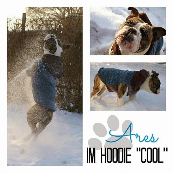 Frostbeulenalarm- Hunderhoodie für Frostbeulen