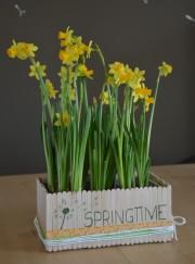 Blumenkiste - Spachtelschachtel