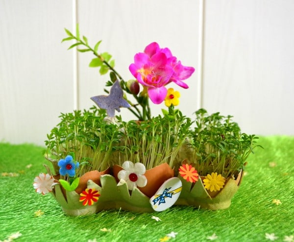 Frühling in der Eierschale