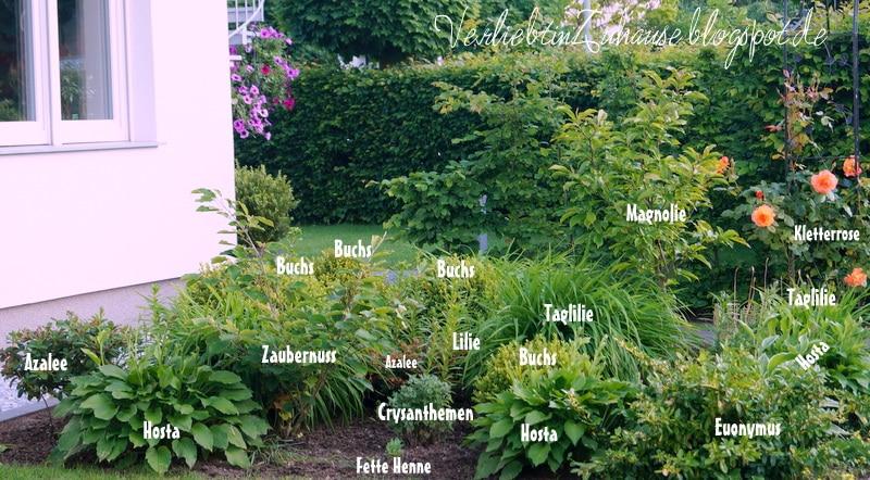 Meine vorgartengestaltung handmade kultur - Vorgarten bepflanzung ...
