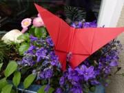 Faltanleitung: Origami Schmetterling
