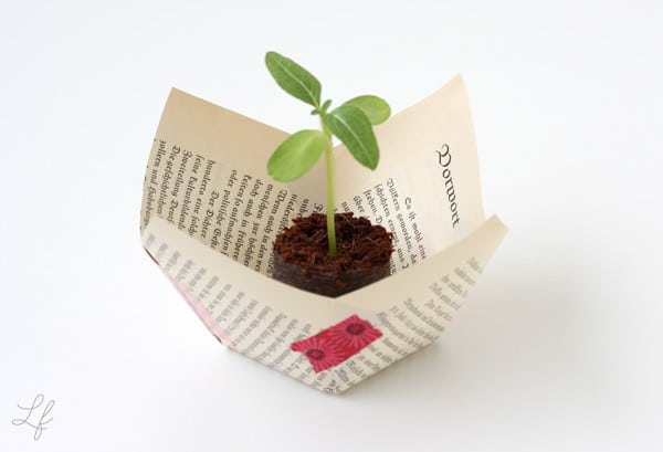 Papier-Blumenübertopf