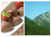 Herzige Erdbeerpralinen