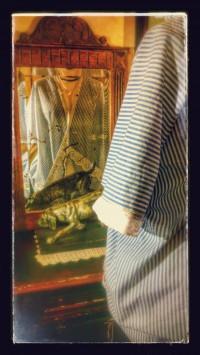 Ladylike Jacke passend zum Hemdkleid