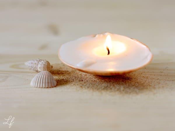 Kerze aus Muschel selbermachen