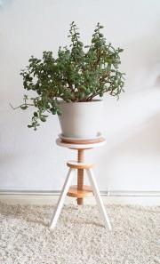 Klavierhocker mit Pflanze