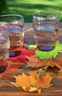 Herbstliche Blätter Untersetzer