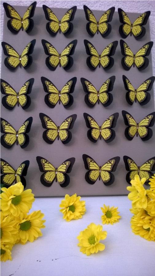 Schmetterlingsbild