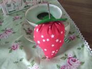 Erdbeeren - Anleitung