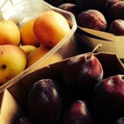 Den Sommer im Glas einfangen…heute: Zwetschgen und Aprikosen
