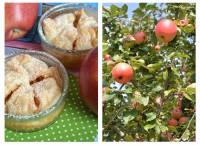 Süßer Apfelnachtisch im Glas
