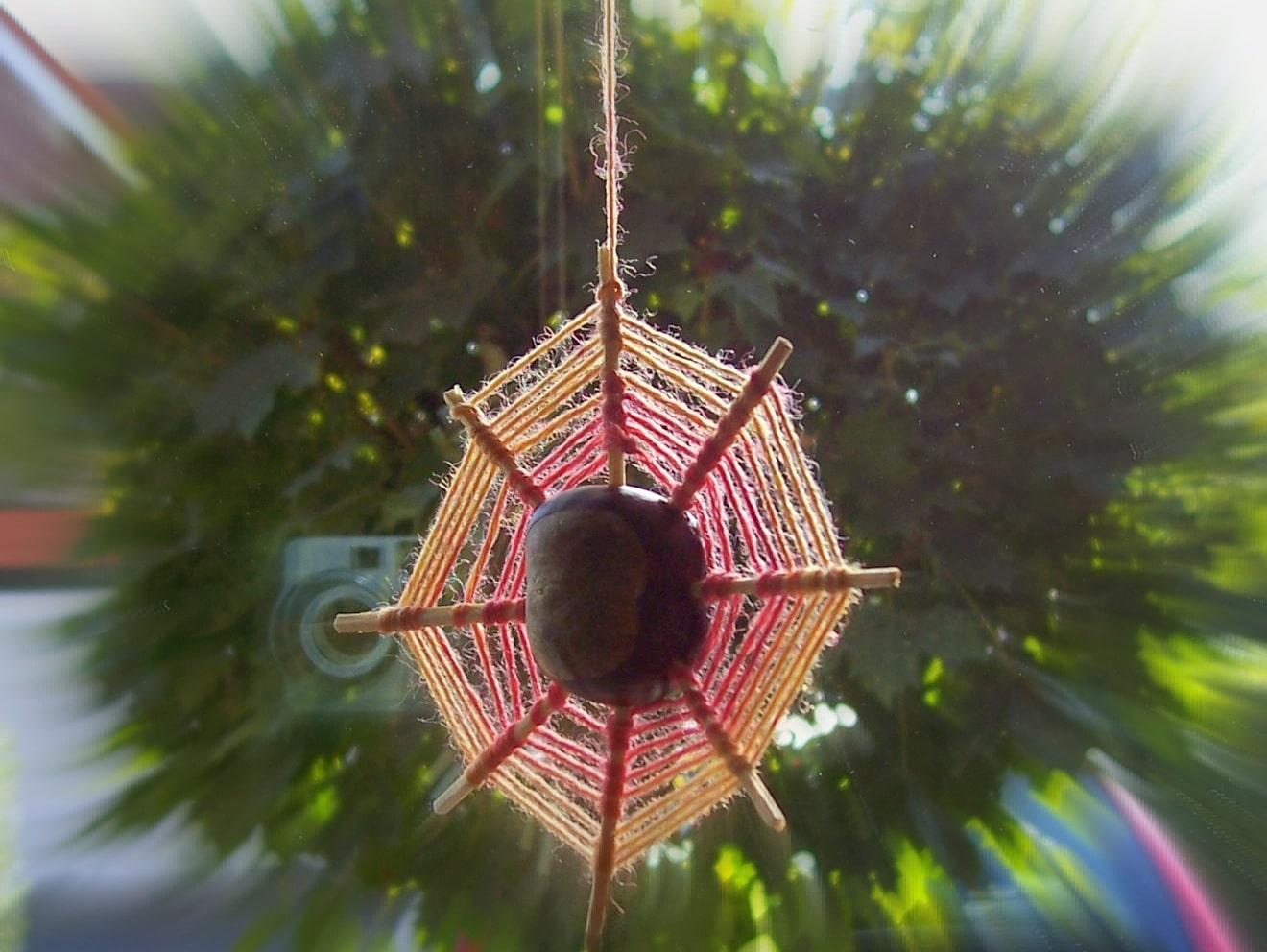 Kastanienspinnen basteln  HANDMADE Kultur