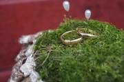 Goldene Klänge – goldene Ringe: Wenn Rockstars Eheringe schmieden