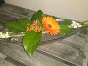Blumenretter