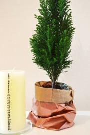 Weihnachtsgedeck mit Countdown-Kerze