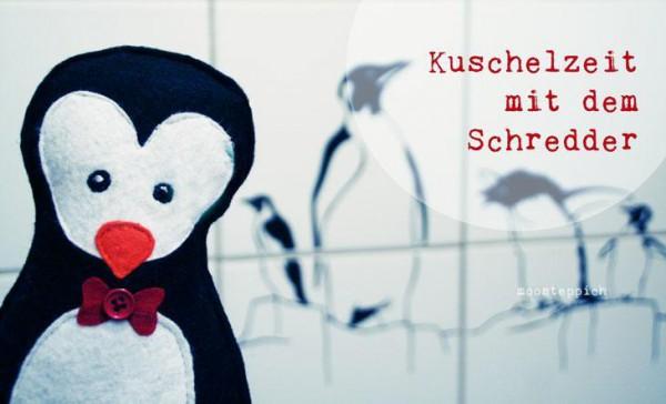 Niedlicher Hausgast - Ein kleiner Pinguin