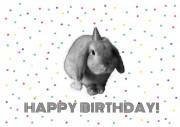 Geburtstagskarten Printable