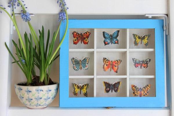 DIY: Schmetterlings-Sammelkasten mit Stammbuchbildchen