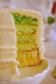 Ombre Torte von den [Foodistas]