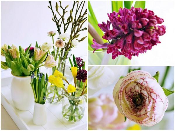 Frühling bei den [Foodistas]