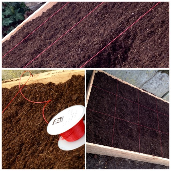 Gärtnern im Quadrat – mein neues 1,35 Quadratmeter-Beet