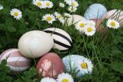 Natürliche buntes Osterkörbchen