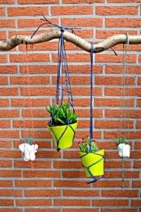 Urban Jungle Bloggers #2   hanging planters