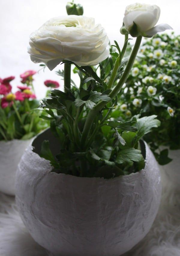 Blumentöpfe aus Gips