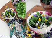 Blümchen-Salat