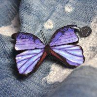 Brosche Schmetterling Blau
