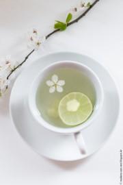 Frühlings-Tee mit einem Hauch von Kirschblüte!