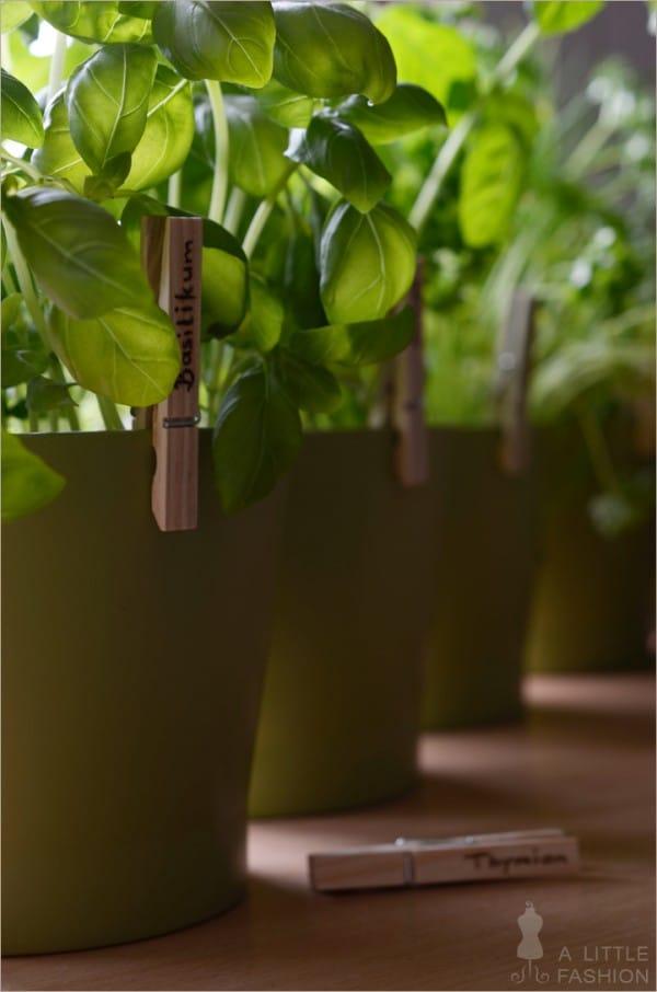 Pflanzenstecker aus Wäscheklammern