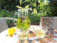 Selbstgemachter Minz-Zitronenverbene-Tee