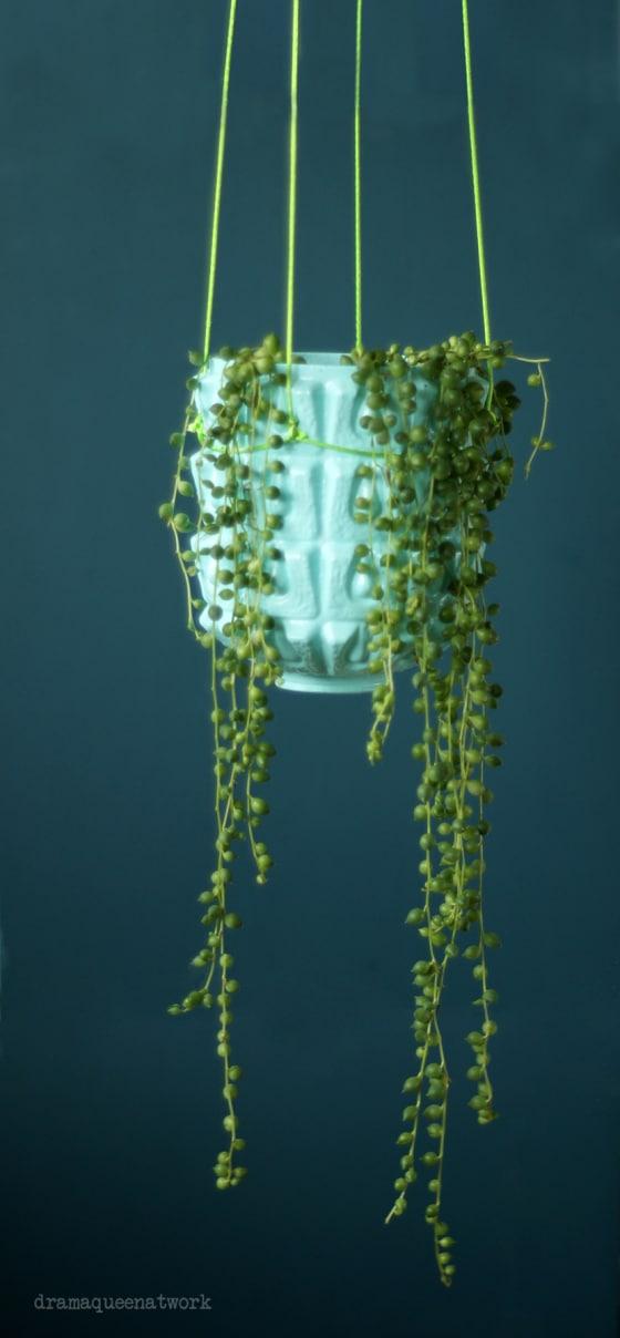 Alte Deckenlampe goes Pflanzenampel