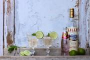 Cocktailstunde: Lillet Wild Berry