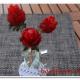 Erdbeer-Rosen
