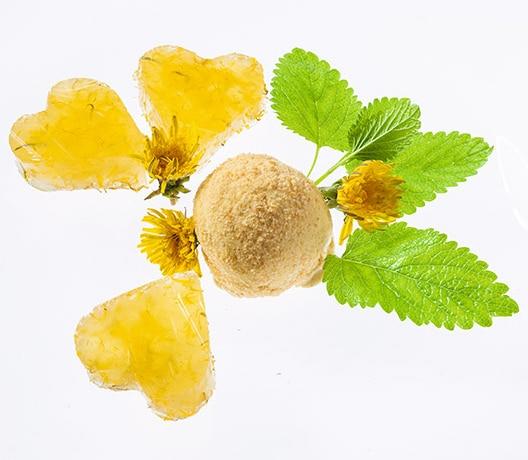 Vanilleeis mit Löwenzahn-Blüten-Gelee
